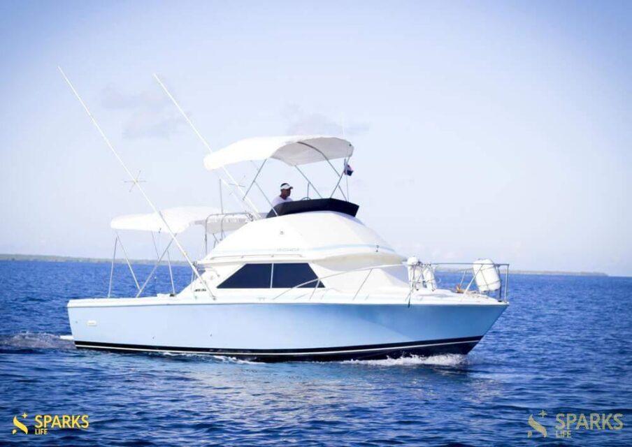 Моторная яхта Consuelo