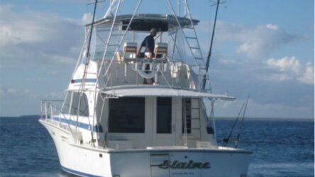 Моторная яхта Elaine