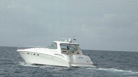 Motor yacht Gabriela
