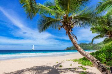 Встречаем новый год на яхте на Кубе!
